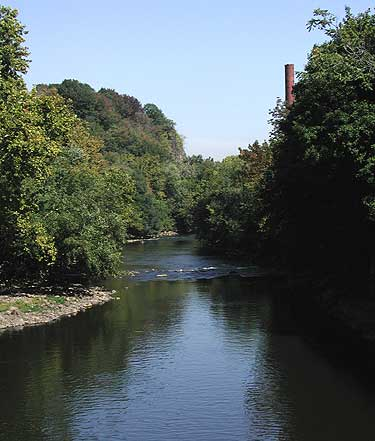 Paterson for Passaic river fishing